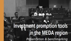 Investment promotion tools in the MEDA region