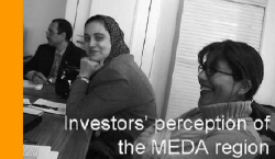 Investors' image of MEDA countries