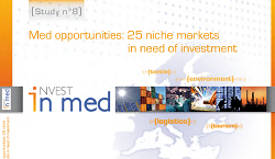 25 niches markets in needs of investment in the Mediterranean - study 8 february 2010