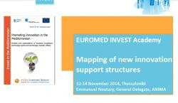 Mapping of new innovation networks in the Mediterranean