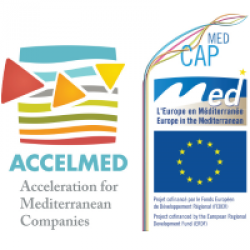Logo of ACCELMED project